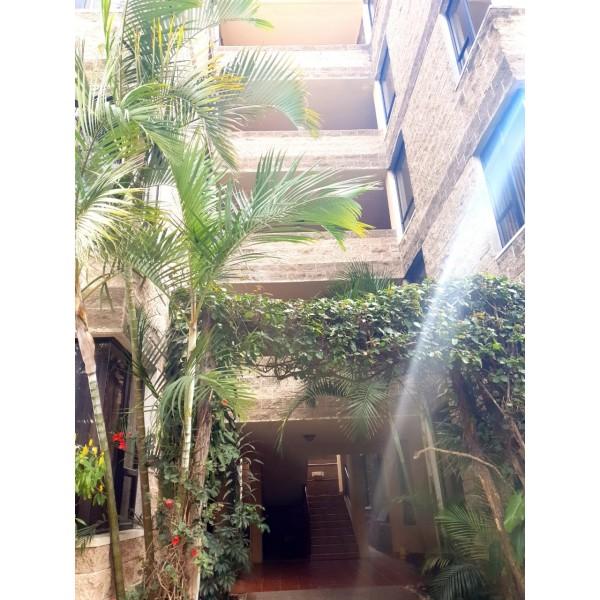 Apartamentos en renta zona 12