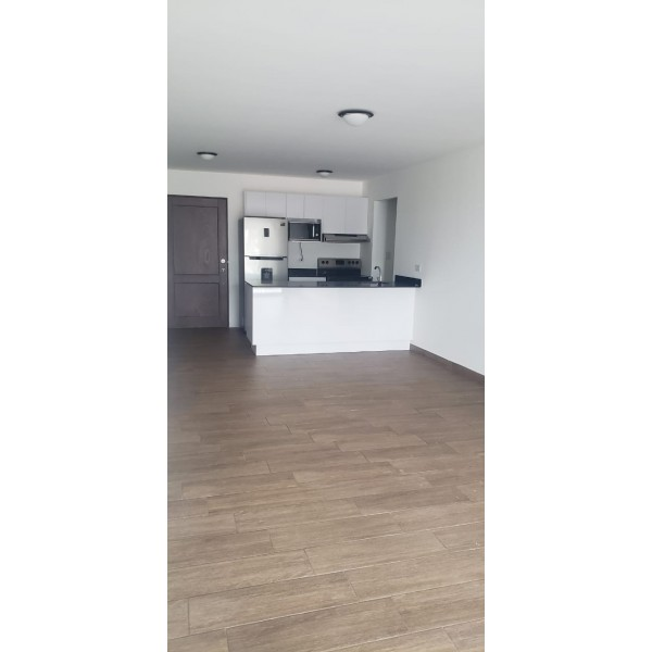 Apartamento en renta zona 11